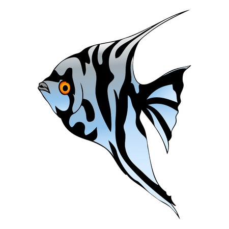 scalare: Graphic fish Illustration