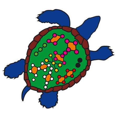 traditional chinese medicine: Feng Shui turtle