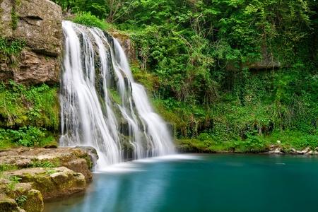 Chute d'eau dans la nature avec de l'eau claire et les plantes vertes Banque d'images - 12423454