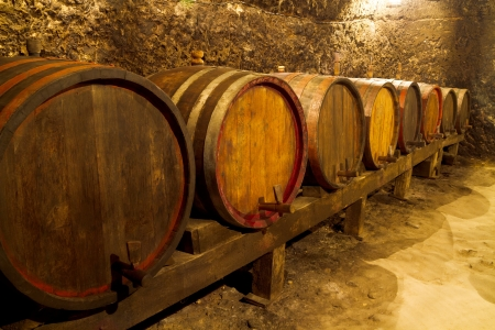 An old wine cellar with oak barrels photo