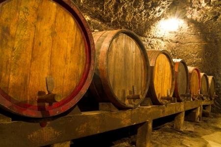 Ein alter Weinkeller mit Eichenfässern Standard-Bild