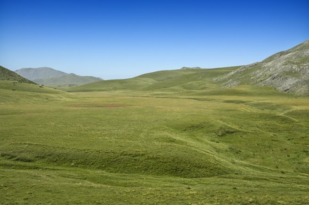 Beautiful Macedonian mountain pasture, mountains in the background Stock Photo