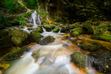 Forest stream flowing over mossy rocks Stock Photo