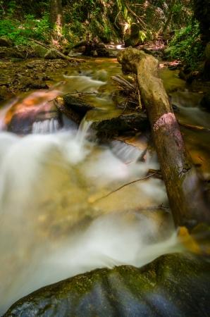 Natural stream pool