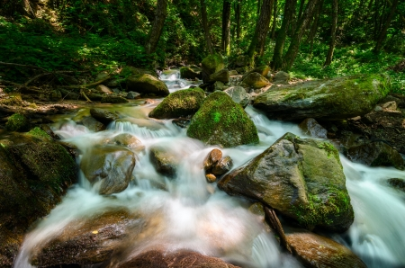 Wild and rushing mountain stream located deep in the forest