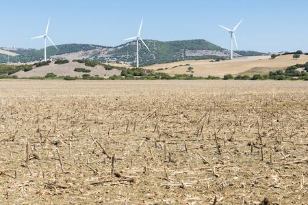 wind farm: Parque E�lico en Espa�a Foto de archivo