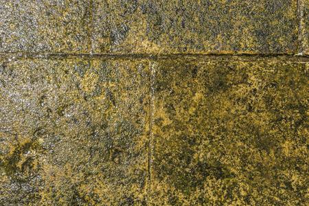 uneven edge: Closeup of a stone pier