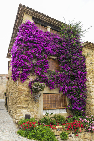 restored: Restored house in a medieval street in Pals, Girona, Catalonia, Spain