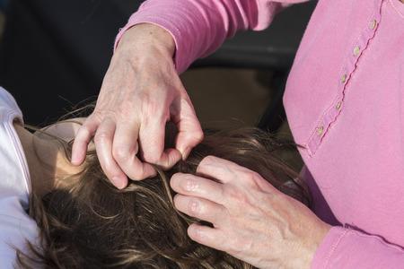 piojos: Madre busca de piojos de la cabeza a su peque�a hija a la luz solar
