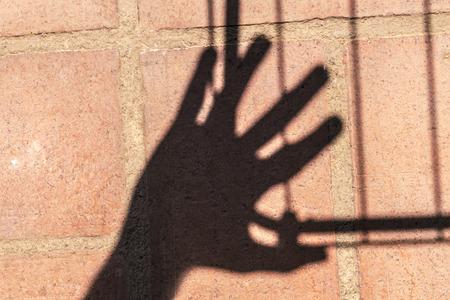 rectilinear: Rectilinear and hand shadows on a clay tile an outdoor terrace