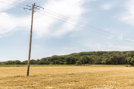 utility pole: Harvested wheat field with a utility pole in Girona, Catalonia, Spain