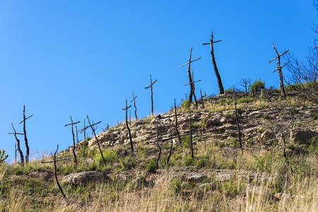 Burnt forest full of crosses made with branches forming a graveyard of trees in Catalonia, Spain