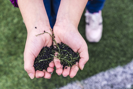 Hands holding a pile of pieces of black synthetic rubber and plastic grass of a soccer field