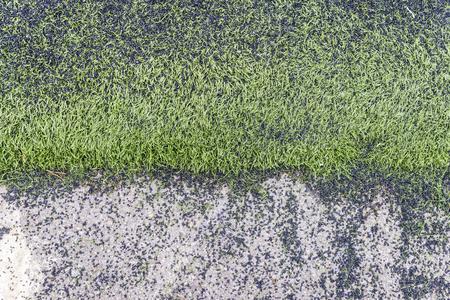 pasto sintetico: Soccer field made of bits of black synthetic rubber and plastic grass Foto de archivo