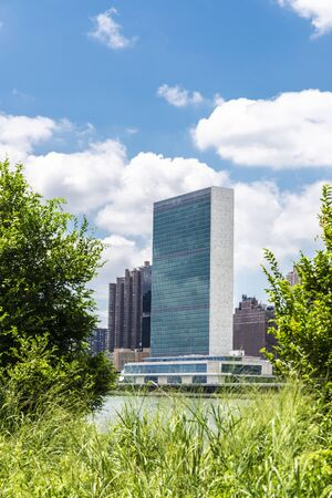 Headquarters of the United Nations (UN) and the Manhattan skyline as seen from Roosevelt Island between herbs and trees in New York City, USA