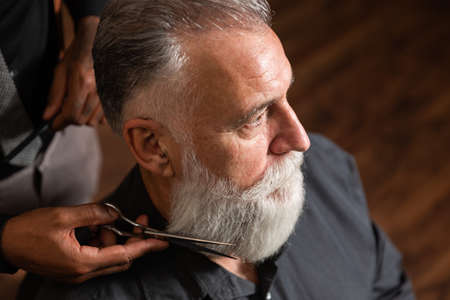 African-American barber trims graying white beard to older Caucasian customer with scissors.