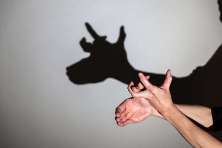 play shadow projected on a white screen. the person's hands shape a reindeer, rudolph