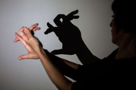 play shadow projected on a white screen. the person's hands shape a rabbit Stockfoto