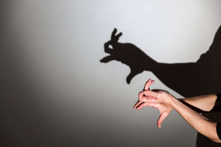 play shadow projected on a white screen. the person's hands shape a rabbit