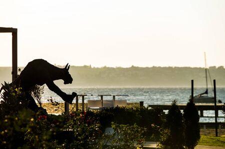 Sculpture in the beach of Slovenia