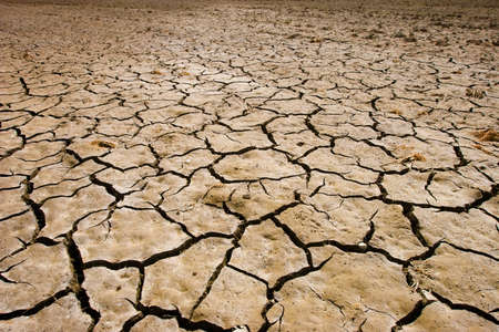 Cracks on the soil during a drought