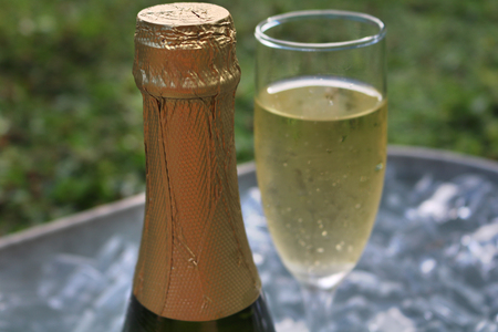 champagne celebration: Champagne and glass in ice on grass.