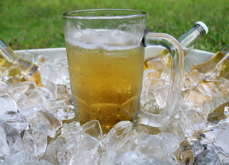 beer bucket: Beer mug centered in ice bucket with beer bottles in ice.
