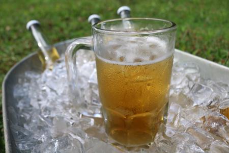 Beer mug in ice bucket with beer bottles in background.