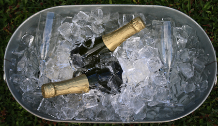 Champagne and glasses in ice tub.