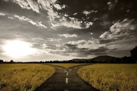 Crossroad in rural landscape under dusk sky photo
