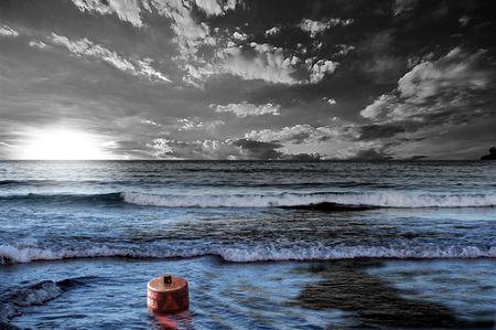 黒石油潮の海の水の汚染