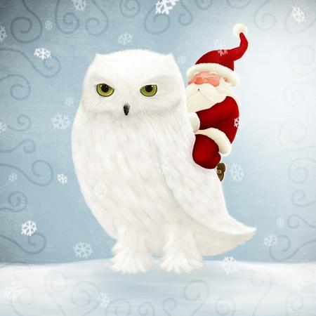 Santa Claus fährt eine große weiße Eule Standard-Bild - 11242271