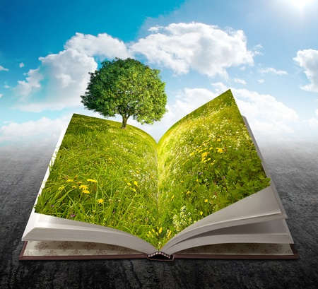 fantasy book: Open book with meadow, flowers and tree