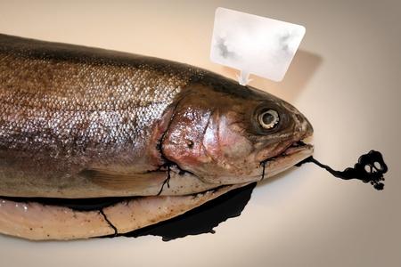 contaminated: Petroleum contaminated fish wintered in the world seas Stock Photo