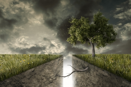 deep roots: A deep track divides the earth, a tree reunites them Stock Photo