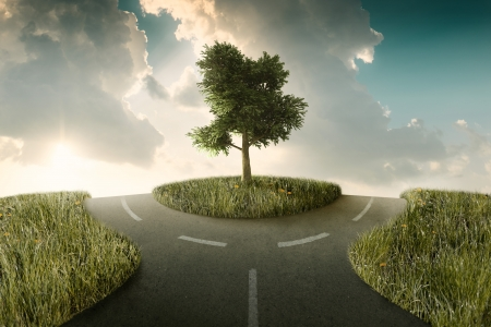 Road bifurcation with tree between in a countryside landscape Stock Photo