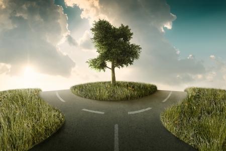 Straße Bifurkation mit Baum zwischen in einer ländlichen Landschaft Standard-Bild - 19402027