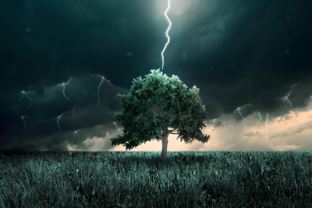 Storm of tunder and lighting over the alone tree Stock Photo