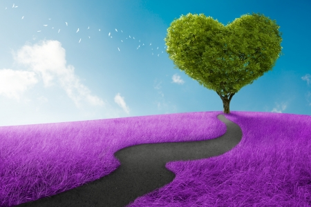road of love: Heart shape tree in lavender meadow for love symbol