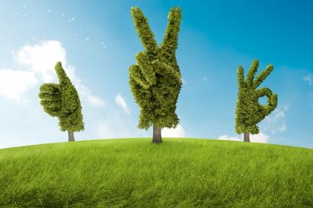 Bomen in de vorm van de hand, dat geleden een positief gebaar Stockfoto