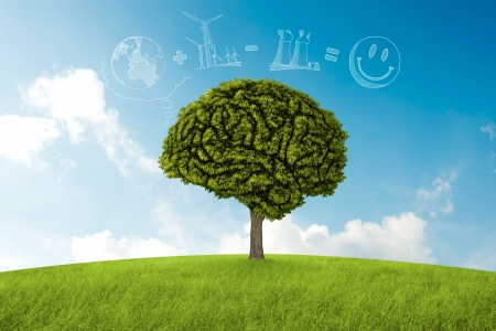 think green: Tree in the shape of brain thinks to environmental solution Stock Photo