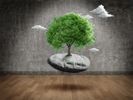 suspend: Suspended tree on rock in Empty room