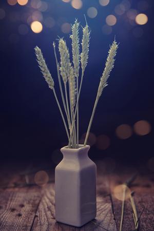 Spighe di grano su sfondo scuro
