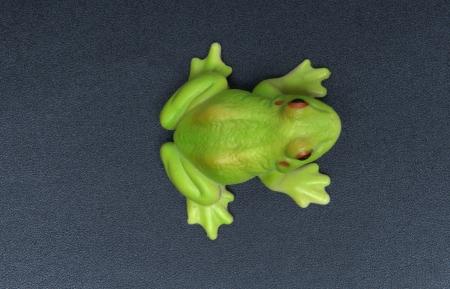 Green plastic frog Stock Photo