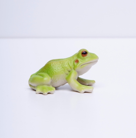 plastic green frog Stock Photo