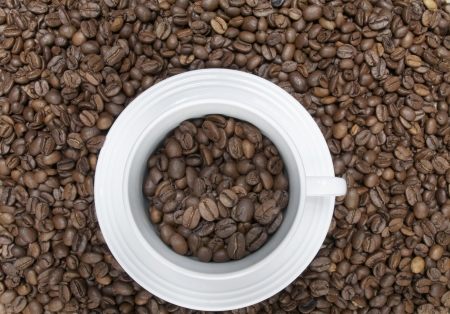 Cup of coffee on coffee beans Stock Photo - 16811616