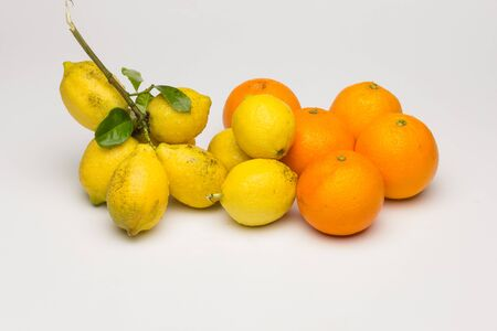 Yellow lemons, citrus fruit next to orange oranges and also citrus fruit next to other vegetables. Organic fruits and vegetables.