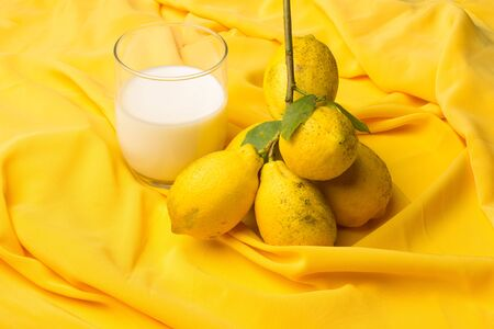 Freshly milked white milk from the cow and yellow lemons with an acid taste from the citrus family. Two ingredients that are still contrary are widely used in cooking. Stok Fotoğraf