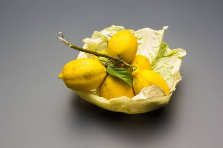 The fruit of the lemon tree is the lemon of yellow skin, with an acid flavor, aromatic skin and intense flavor, full of vitamin C; the lemon is used as juice to cool and in the kitchen to cook fish