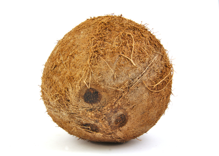 husks: One fresh coconut on a white background
